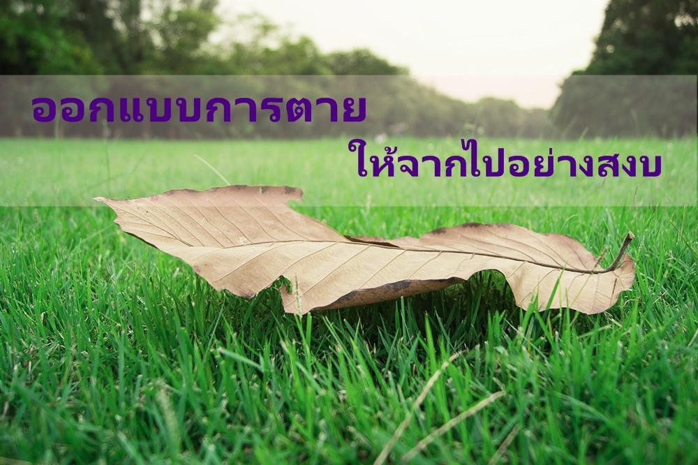 ออกแบบการตาย ให้จากไปอย่างสงบ thaihealth