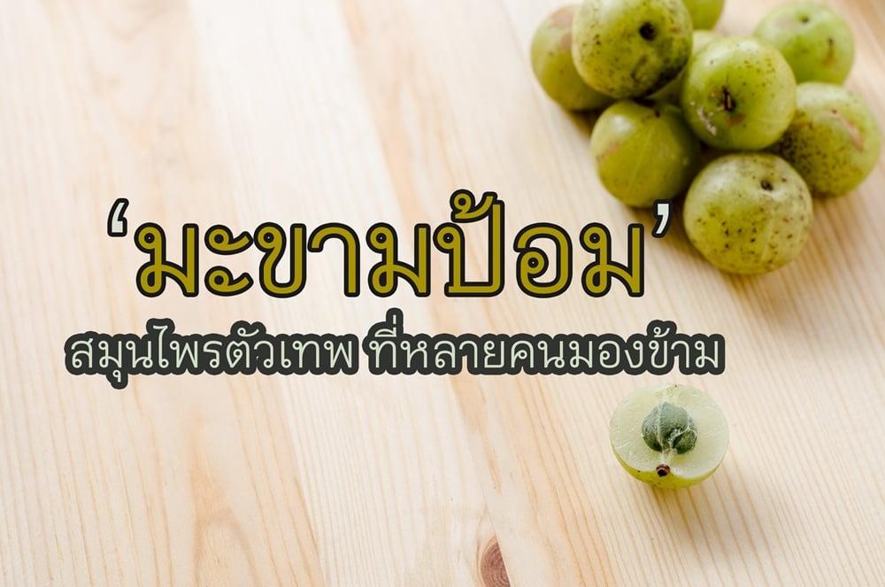 มะขามป้อม สมุนไพรตัวเทพ thaihealth