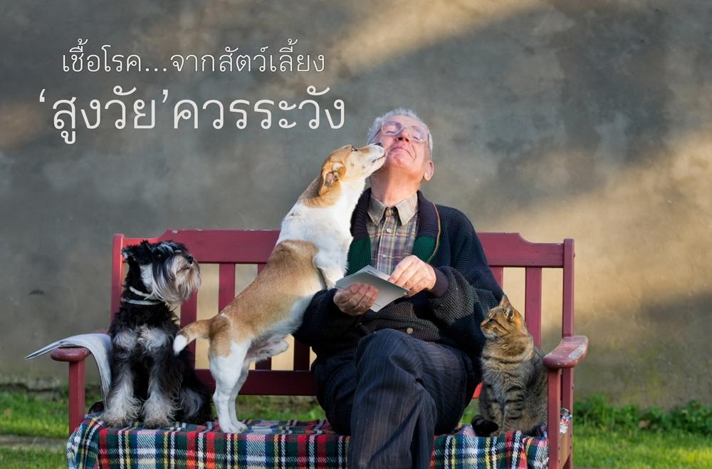 เชื้อโรคจากสัตว์เลี้ยง สูงวัยควรระวัง thaihealth