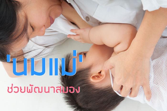 'นมแม่' ช่วยพัฒนาสมอง thaihealth