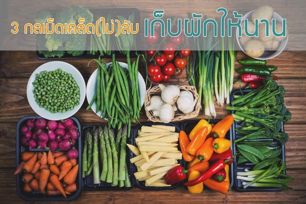 3 กลเม็ดเคล็ด(ไม่)ลับ เก็บผักให้นาน thaihealth