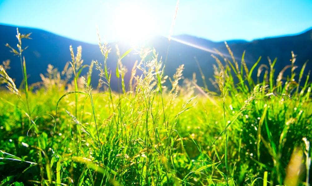 ?5 วิธีคิด? สร้างความสุขใหม่ในชีวิตเดิม thaihealth