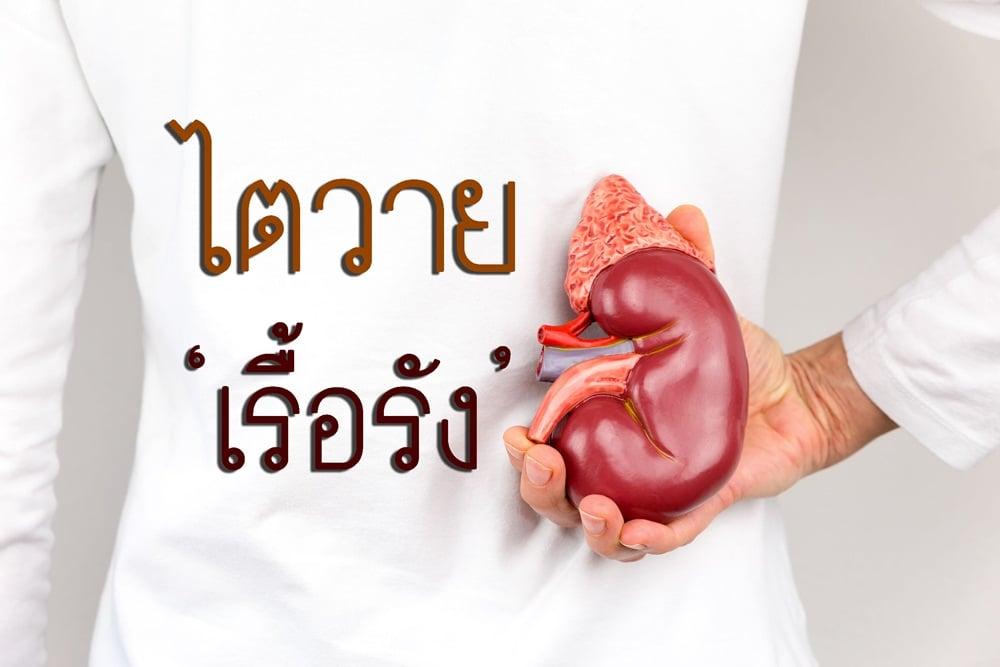 ไตวายเรื้อรัง thaihealth