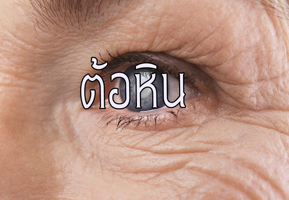 ต�อหิ� thaihealth