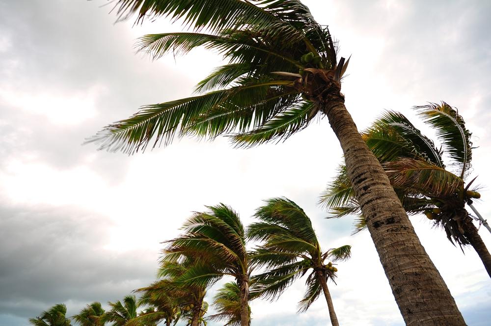 ปภ.แนะประชาชนเตรียมพร้อมรับมือพายุฤดูร้อน  thaihealth