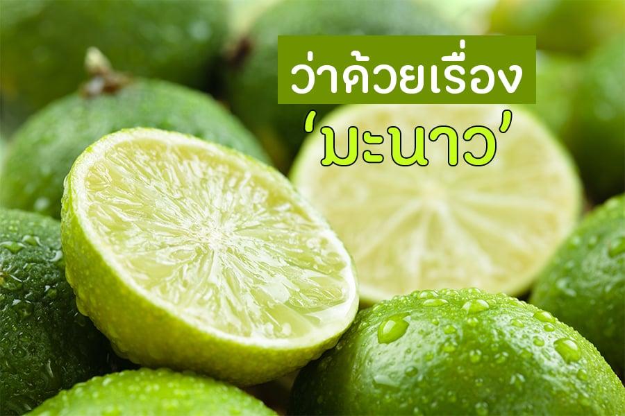 ว่าด้วยเรื่อง มะนาว thaihealth