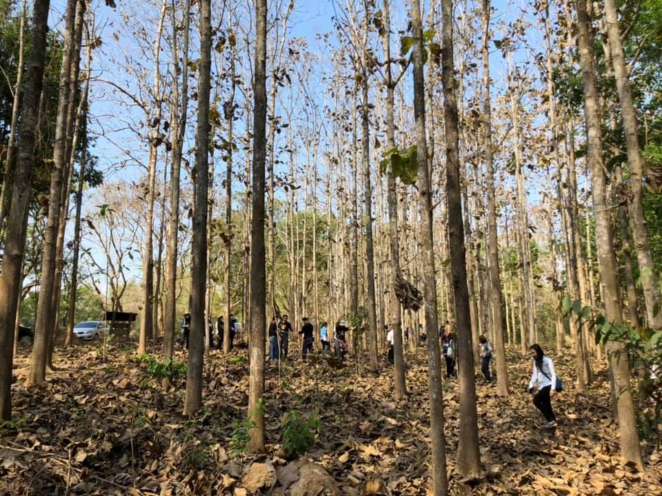 เครือข่ายร่วมสร้างชุมชนท้องถิ่นน่าอยู่ลงพื้นที่จัดการระบบนิเวศ thaihealth