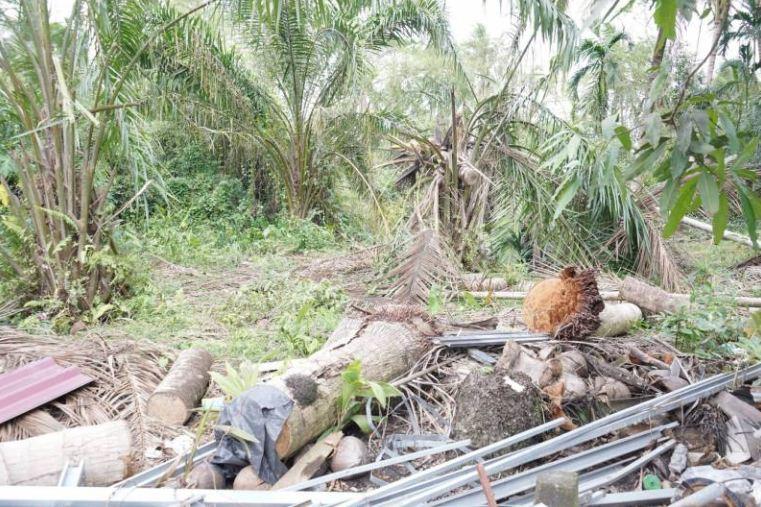 1 ตำบล 1 ศูนย์จัดการภัยพิบัติ ณ จ.นครศรีธรรมราช thaihealth