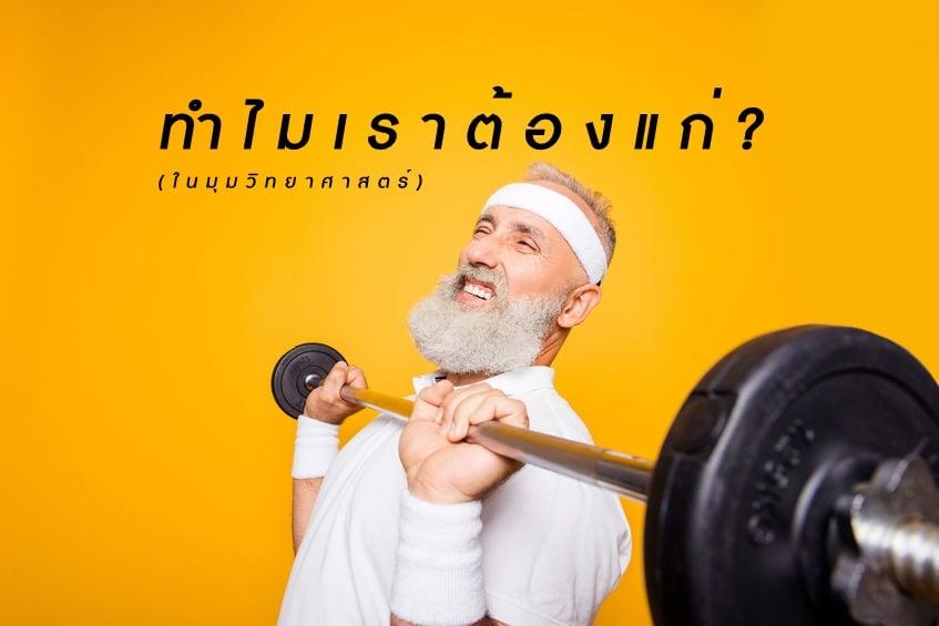 ทำไมเราต้องแก่? (ในมุมวิทยาศาสตร์) thaihealth