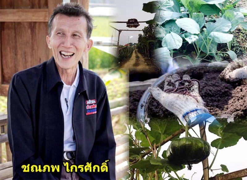 ทำไร่นาสวนผสมแทนปลูกข้าวเชิงเดี่ยว..เพิ่มมูลค่า-ยั่งยืน thaihealth