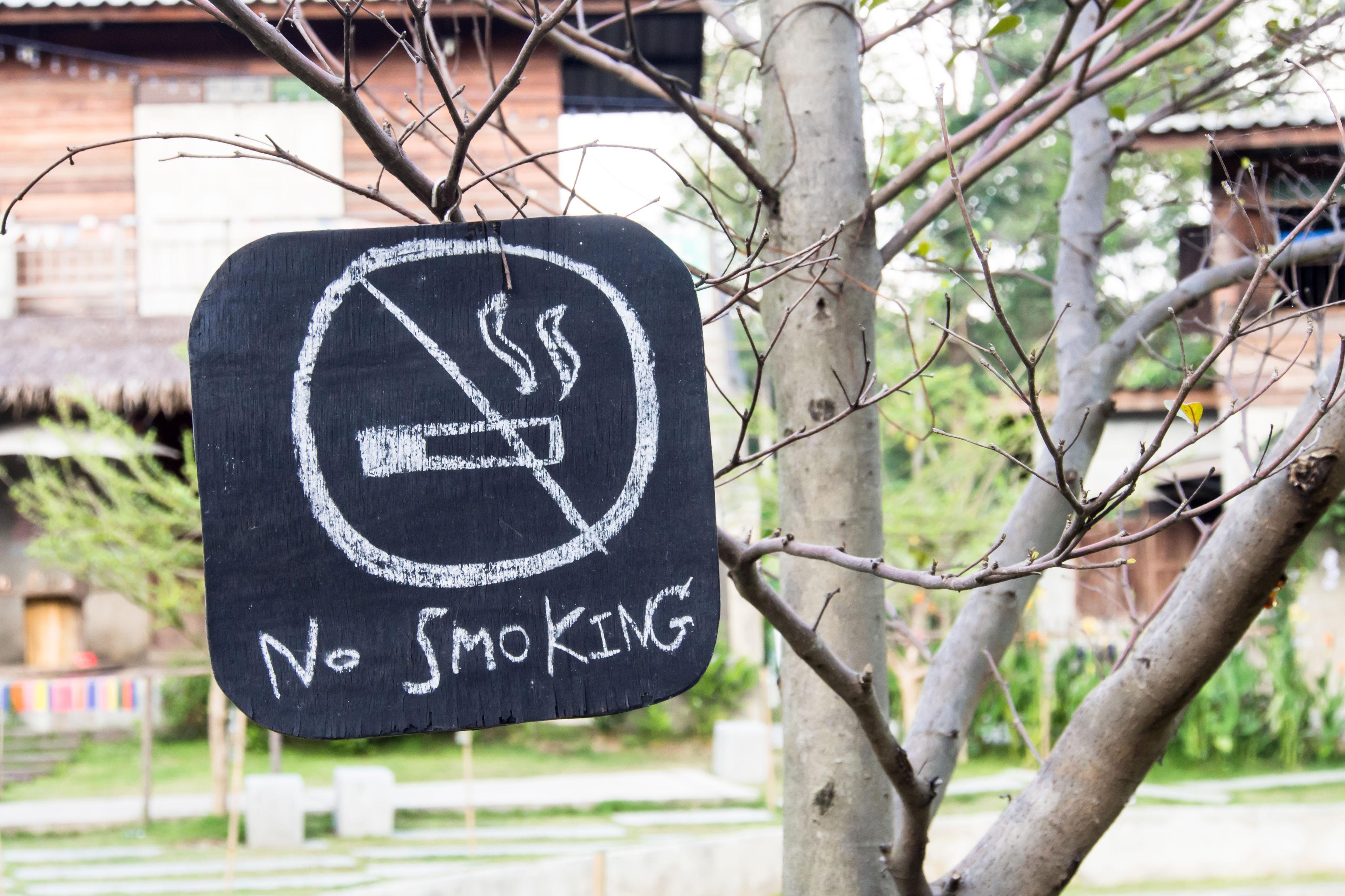 มฟล. มหาวิทยาลัยปลอดบุหรี่ thaihealth