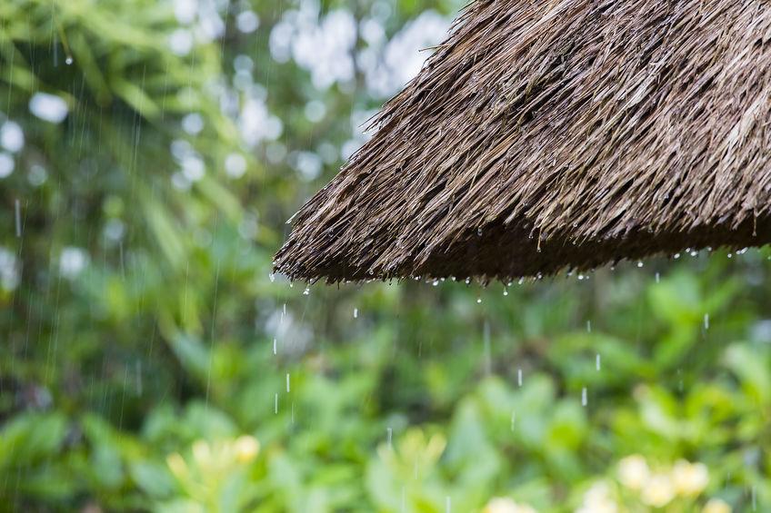 แนะประหยัดน้ำไว้ใช้หากเกิดฝนทิ้งช่วง thaihealth