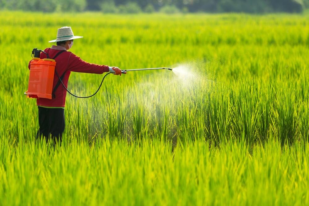 คนไทยเจ็บป่วย เพราะสารเคมีเกษตรนับพันรายต่อปี thaihealth