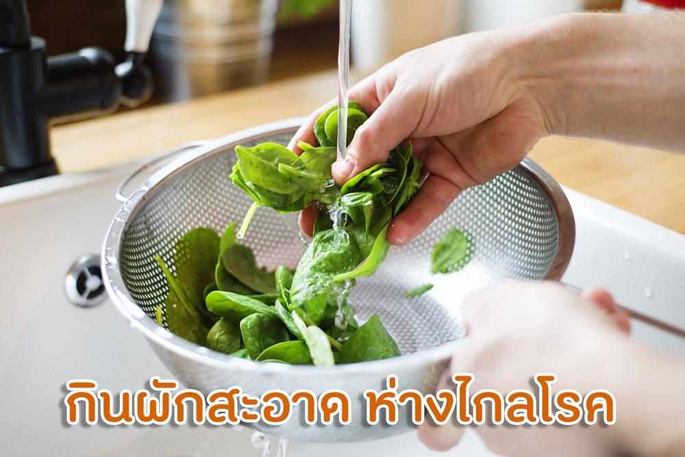 กินผักสะอาด ห่างไกลโรค thaihealth
