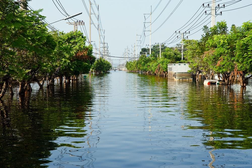แผนดูแลประชาชนช่วงน้ำท่วมและหลังน้ำลด thaihealth