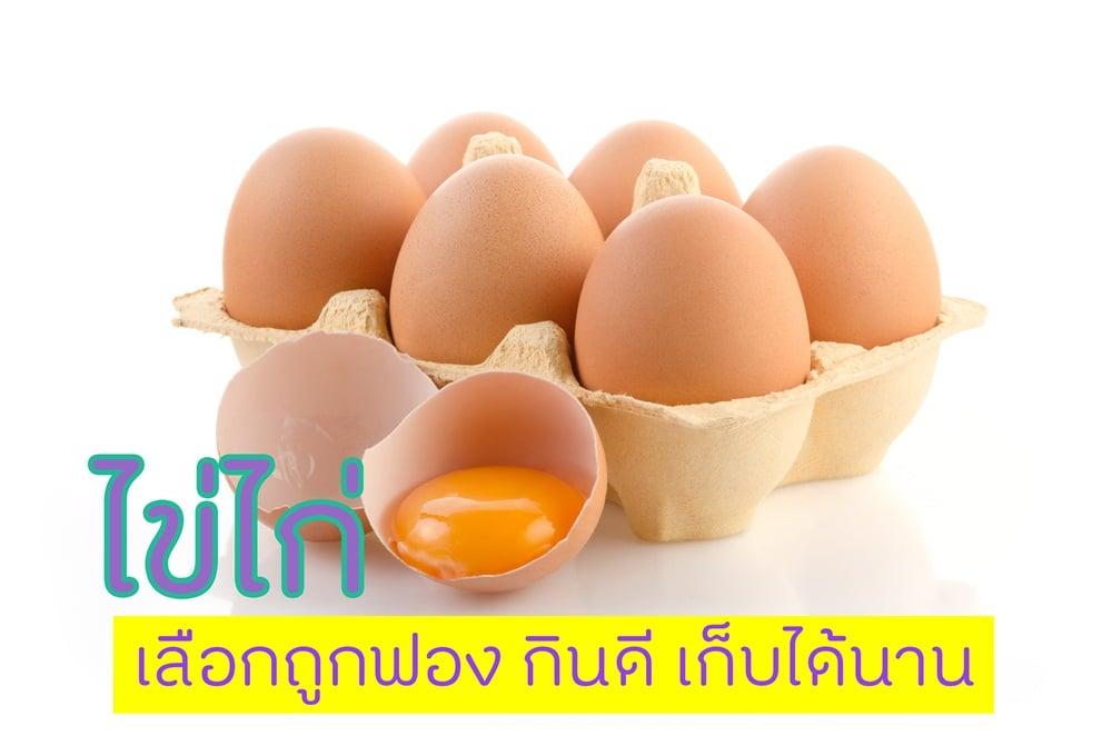 ไข่ไก่ เลือกกินถูกฟอง กินดีเก็บได้นาน thaihealth