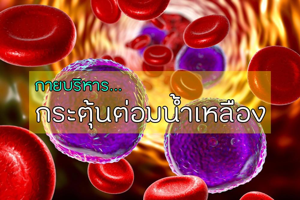กายบริหารกระตุ้นต่อมน้ำเหลือง thaihealth