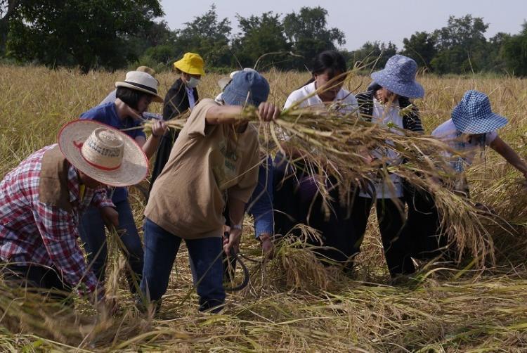 นครสวรรค์บูรณาการขับเคลื่อนสู่ เมืองอาหารปลอดภัย thaihealth