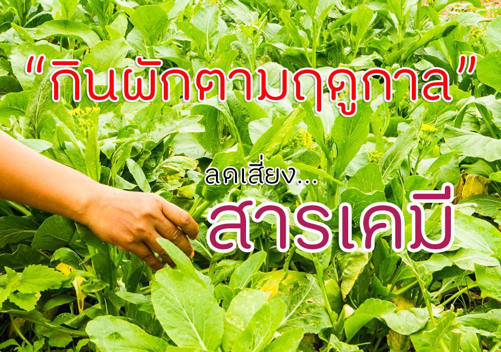 กินผักตามฤดูกาล ลดเสี่ยงสารเคมี thaihealth