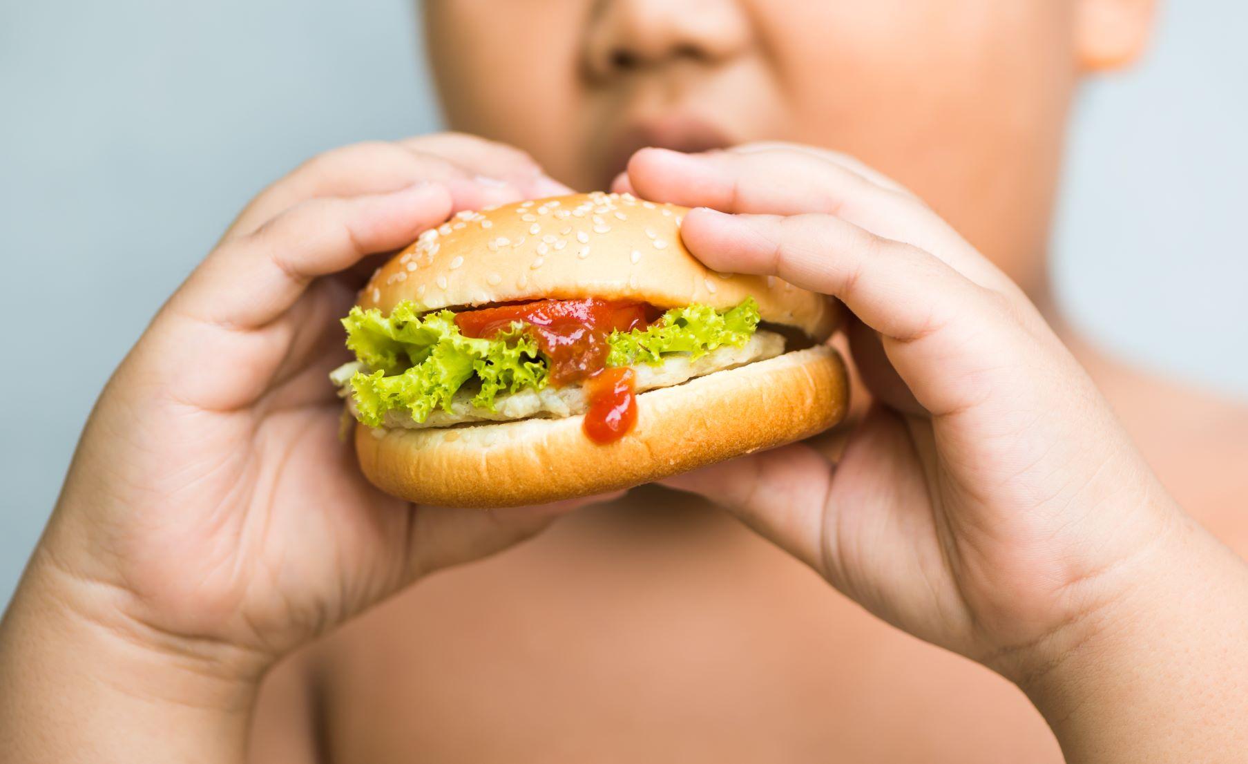 แนะช่วงปิดเทอมเลี่ยงอาหารที่มีแป้ง ไขมัน ลดภาวะอ้วนในเด็ก thaihealth