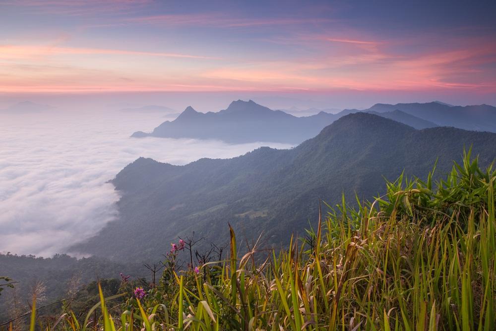 แหล่งท่องเที่ยวอุทยาน ฟื้นสมบูรณ์ช่วงโควิด-19 thaihealth