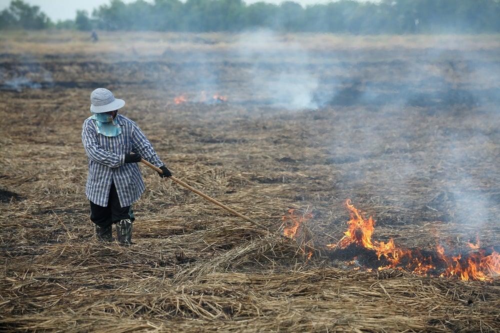 ชุมชนเมืองลอง คิดค้นเตาชีวมวลแก้ฝุ่น PM 2.5 thaihealth