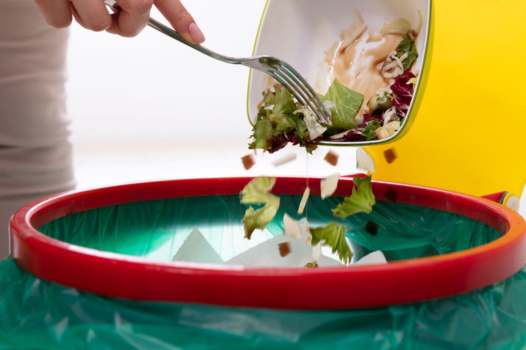 TDRI ห่วงอาหารเหลือเป็นขยะอื้อ แนะบริโภคแต่พอดี แปรรูปใช้ภาคเกษตร thaihealth