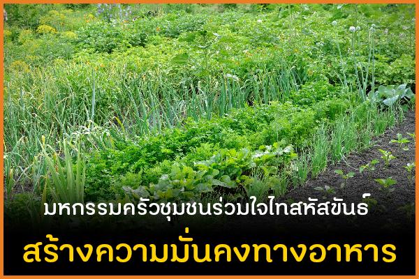 มหกรรมครัวชุมชนร่วมใจไทสหัสขันธ์ สร้างความมั่นคงทางอาหาร thaihealth