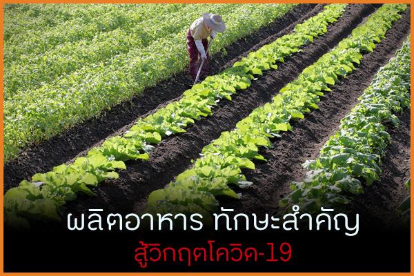ผลิตอาหาร ทักษะสำคัญสู้วิกฤติ thaihealth