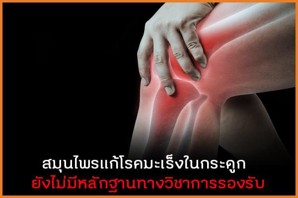 สมุนไพรแก้โรคมะเร็งในกระดูก  ยังไม่มีหลักฐานทางวิชาการรองรับ thaihealth