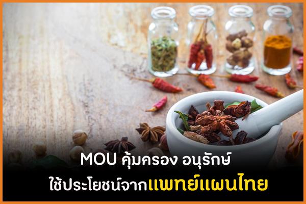 MOU คุ้มครอง อนุรักษ์ ใช้ประโยชน์จากแพทย์แผนไทย thaihealth