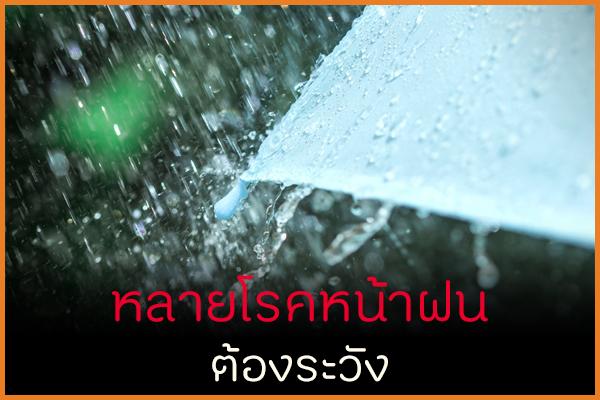 หลายโรคหน้าฝนต้องระวัง thaihealth