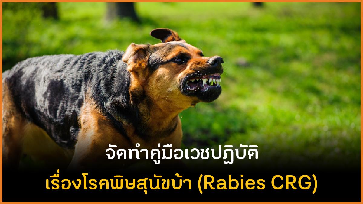 จัดทำคู่มือเวชปฏิบัติ เรื่องโรคพิษสุนัขบ้า (Rabies CRG) thaihealth