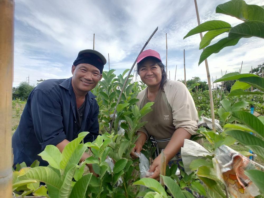 สวนสามพราน-สามพรานโมเดล จุดประกายท่องเที่ยววิถีอินทรีย์ thaihealth