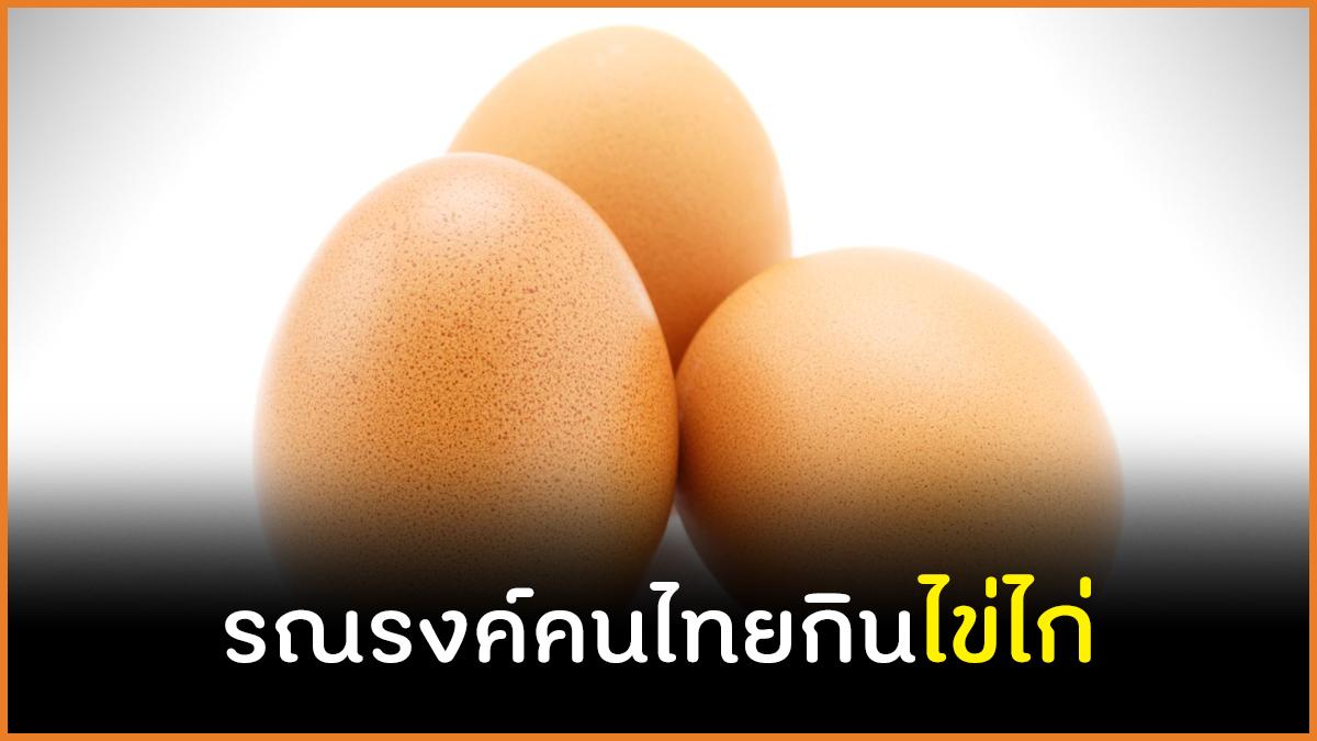 รณรงค์คนไทยกินไข่ไก่ thaihealth