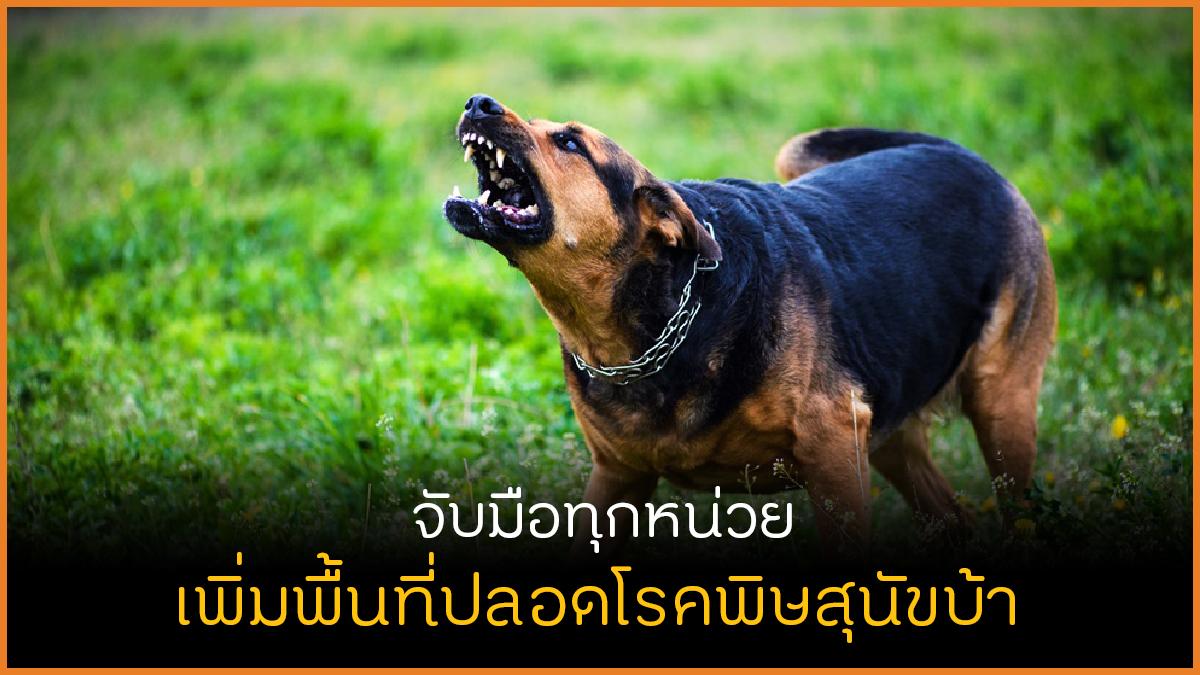 จับมือทุกหน่วยงาน เพิ่มพื้นที่ปลอดโรคพิษสุนัขบ้า thaihealth
