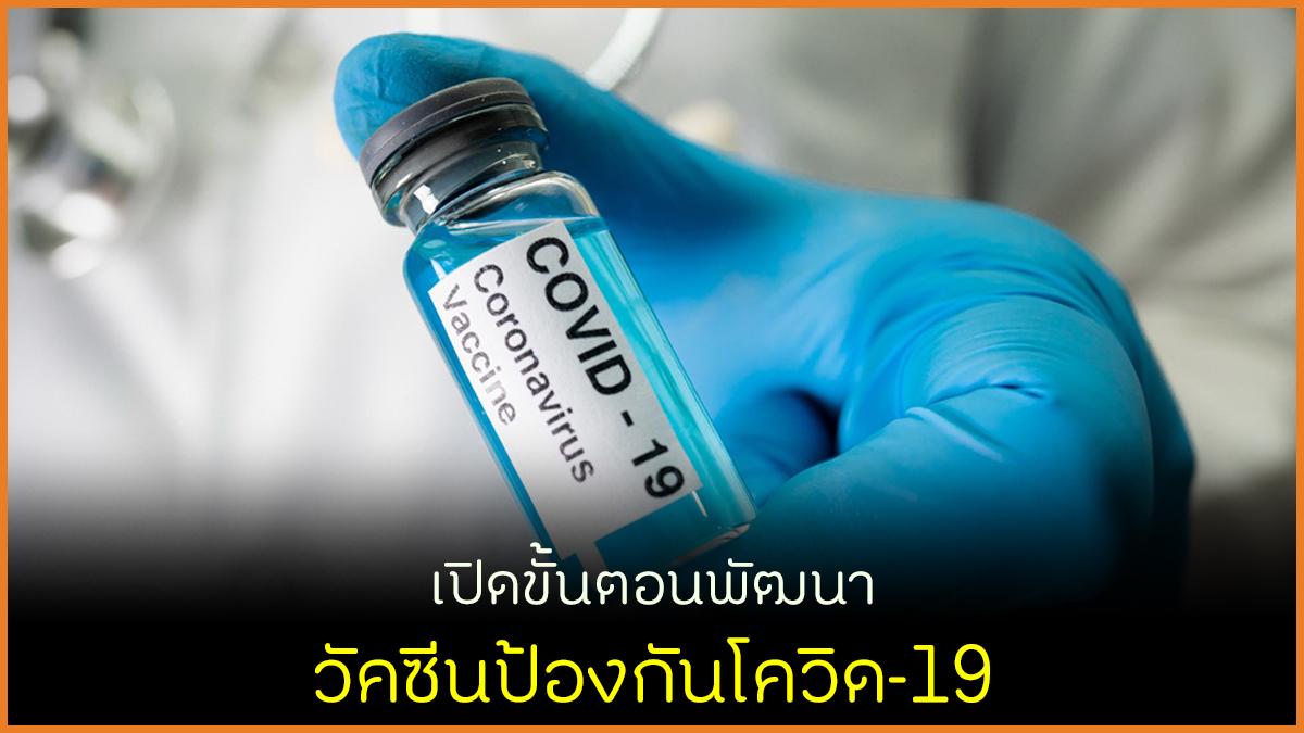 เปิดขั้นตอนพัฒนา วัคซีนป้องกันโควิด-19 thaihealth