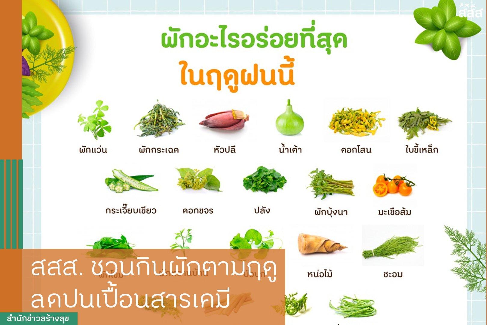 สสส.ชวนกินผักตามฤดู ลดปนเปื้อนสารเคมี thaihealth