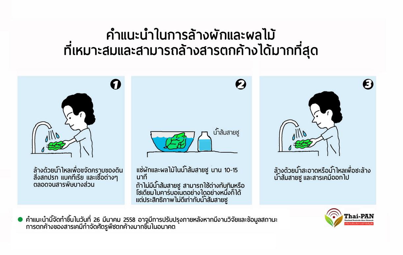 ผักปลอดภัย กินได้ ดูอย่างไรดี thaihealth
